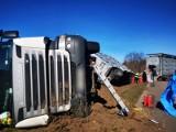 Słowenkowo: Ciężarówka przewożąca trzodę chlewną wywróciła się na drodze ZDJĘCIA