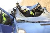 Wypadek w Gołanicach: Bus uderzył w jelenia pod Lesznem. Dwie osoby zostały ranne. Potężne zwierzę niemal wpadło do kabiny [ZDJĘCIA]
