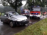 Groźny wypadek pod Łodzią! Samochód uderzył w drzewo. Kierowca w szpitalu ZDJĘCIA