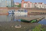 Warta w Poznaniu wysycha. W rzece jest najmniej wody w historii! [ZDJĘCIA]