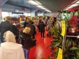 Białystok. Na stadionie miejskim trwa Festiwal Roślin. Kilkusetmetrowa kolejka nie odstrasza i każdy wychodzi z kwiatami (zdjęcia)