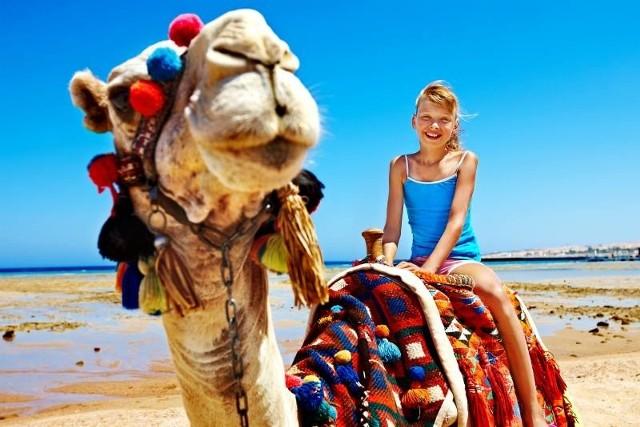 Do łask wracają wakacje w krajach północnej Afryki - w Egipcie oraz w Tunezji.