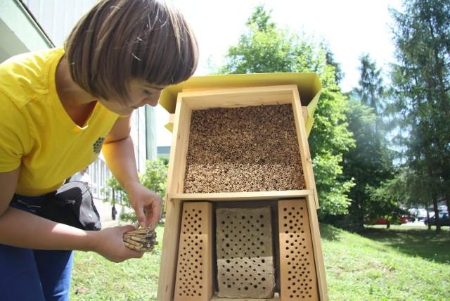 Od niedawna w lubelskim botaniku jest hotel dla pszczół.