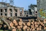 Leśnicy chcą ochrony lasów przy inwestycjach w Bydgoszczy, a ratusz nie