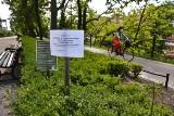Wrocław: Zakaz dotykania krzewów. To może być groźne. Trwają opryski
