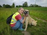 Bruno ze schroniska w Pabianicach nie radził sobie bez wolontariuszy ZDJĘCIA