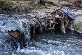Wycieczka w rezerwacie przyrody pod Wałbrzychem. Ilość śmieci przeraża