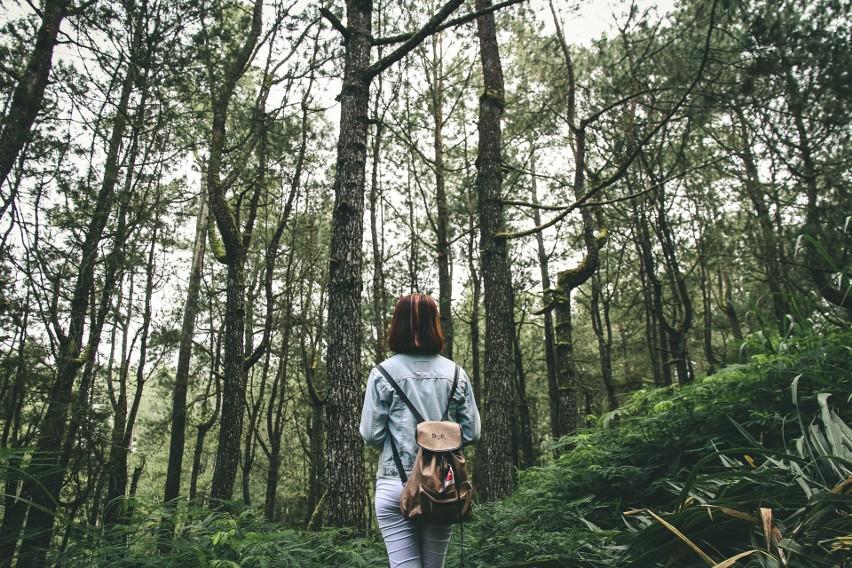 Spacer w lesie...