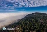 Unikatowe zdjęcia najwyższych szczytów Gór Świętokrzyskich. Sławomir Rakowski: - Polowałem na to trzy lata (WIDEO, ZDJĘCIA)