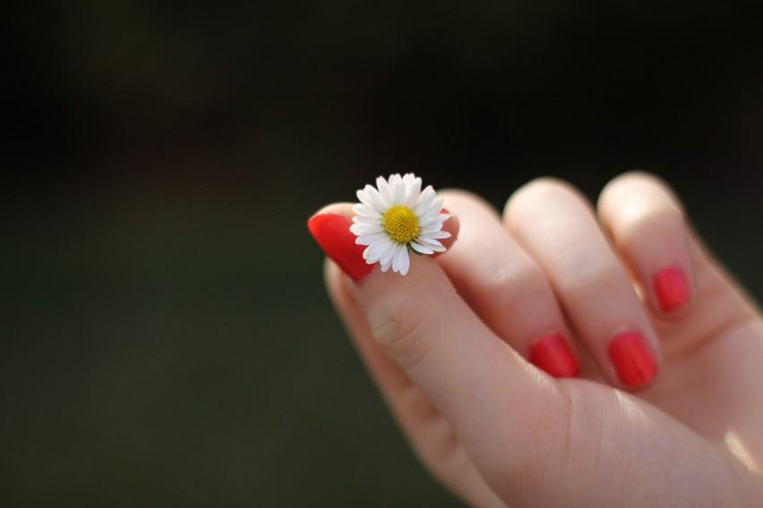 Olej konopny odżywia i wzmacnia paznokcie...