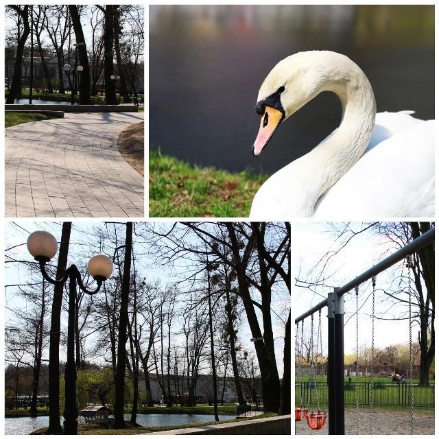 Z tego mogą być dumni w Parku Miejskim mieszkańcy Wodzisławia Śląskiego