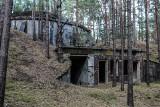 Lubuskie. Krzystkowicki las to jedno z najbardziej tajemniczych miejsc. Jaką mroczną historię skrywa? Dlaczego ginęli tam ludzie?