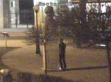 Znów znieważony pomnik Zamenhofa. 27-latek złapany przy oddawaniu moczu