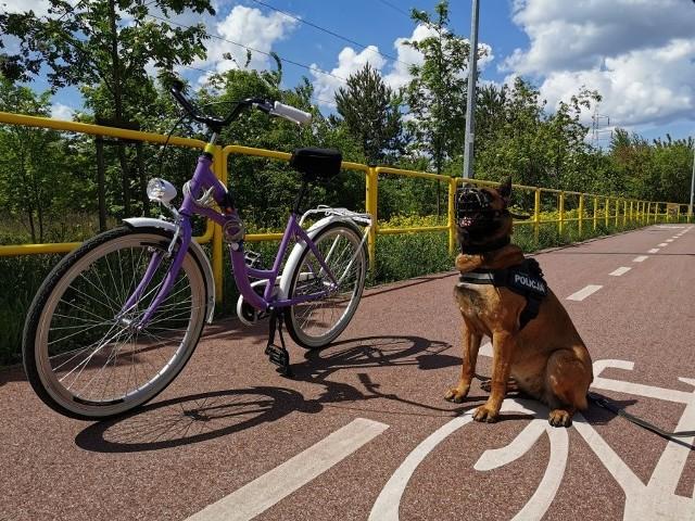 - Nie zostawiaj roweru niezabezpieczonego nawet na chwilę, zawsze używaj linek zabezpieczających i innych blokad - przypomina policja. Radzi też, aby sfotografować swój rower i spisać fabryczne numery identyfikacyjne, które - w przypadku kradzieży - ułatwią jego poszukiwanie
