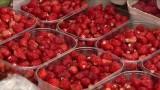 Owoce i warzywa, które nawadniają nasz organizm