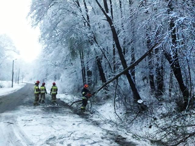 Strażacy tylko w nocy interweniowali 40 razy a wezwań do usunięcia powalonych drzew przybywa
