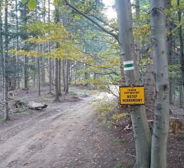 Część zielonego szlaku na Makowicę biegnie przez prywatne tereny, które ktoś rozjeżdża kładami