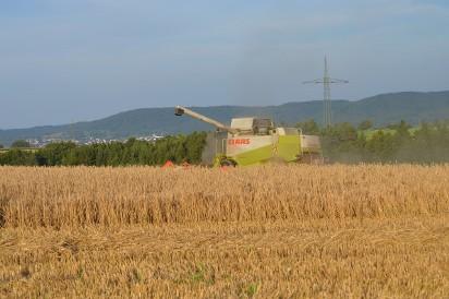 Inne rodzaje CENY ZIEMI rolnej 2018 w Polsce. Ile kosztuje hektar gruntów w TP66
