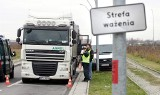 """Przeładowane ciężarówki rozjeżdżają miasta i bawią się w ciuciubabkę z """"krokodylami"""""""