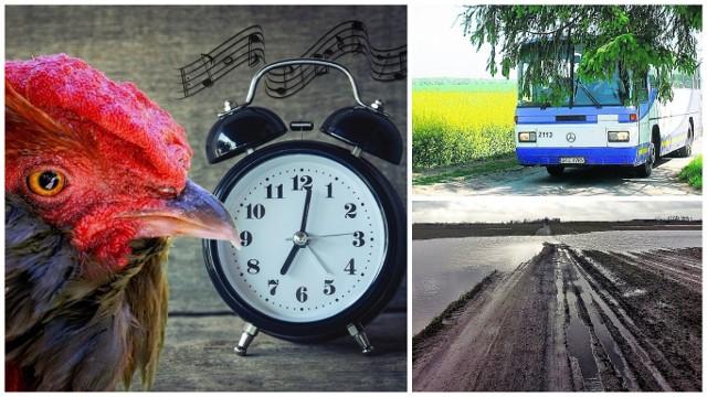 Budzik nie ma litości, po świeże bułki daleko, marzenie o wakacjach trzeba odłożyć. Co jeszcze denerwuje polskiego rolnika i jego rodzinę?