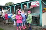 Psami zaopiekują się przedszkolaki ze Słupska (wideo)