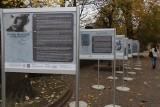 Plenerowa wystawa o Szarych Szeregach na rynku Manufaktury
