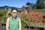 Najpiękniejsze róże zachwycają w kieleckim Ogrodzie Botanicznym [ZDJĘCIA]