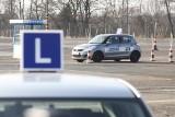 Egzamin na prawo jazdy. PiS szykuje zmiany, oblewanie przestanie się WORD-om opłacać