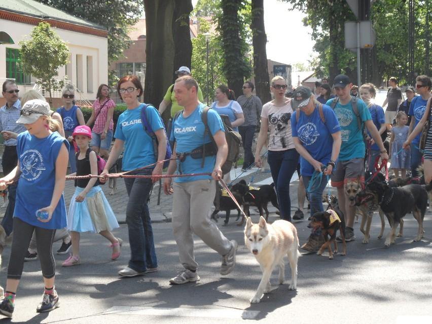 Gliwicki spacer szczęścia z psami ze schroniska dla...