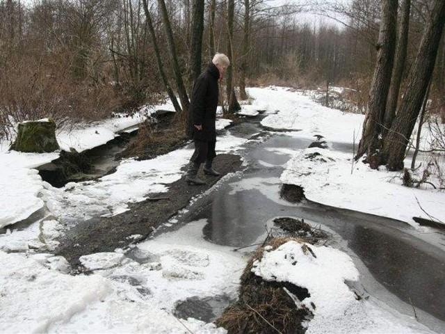 Resztki utwardzonej nawierzchni na ścieżce pokazuje Zofia Gralewska, mieszkanka Żyznej