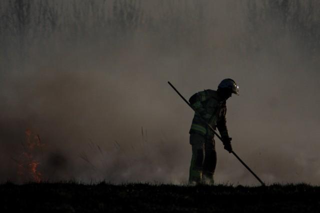 Zazwyczaj wiosną lub jesienią, zdarzają się epizody smogowe związane z napływem zanieczyszczeń od naszych sąsiadów, szczególnie ze wschodu, co jest pochodną głównie wypalania traw.