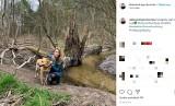 Pies zmasakrował jej twarz! Dramat polskiej aktorki! Wzięła go ze schroniska. Aleksandra Prykowska pogryziona przez psa! ZDJĘCIA 21.05.20
