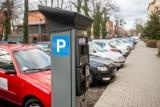 Strefa Płatnego Parkowania w Poznaniu. Prace na Wildzie mogą się opóźnić z powodu zapowiadanego deszczu