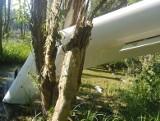 Zderzenie dwóch szybowców na terenie leśnictwa Bojanowo. Jeden z pilotów się katapultował, drugi bezpiecznie wylądował