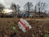 Antywizytówki Gdyni. Te zakątki nie przynoszą miastu chluby! Zaniedbany Park Rady Europy, zaśmiecone zakamarki. Zobaczcie galerię!