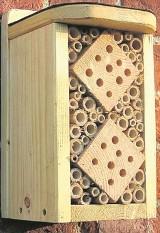 Dlaczego warto zbudować domek dla owadów?