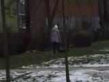 Poznań: Udało się ustalić, kim jest kobieta, która biła psa przy ul. Promienistej. Zwierzak został jej odebrany