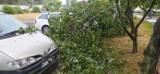 Burza nad Bydgoszczą i powiatem. Złamane drzewo zahaczyło o rowerzystkę. Inne spadło na dom w Osielsku [zdjęcia]