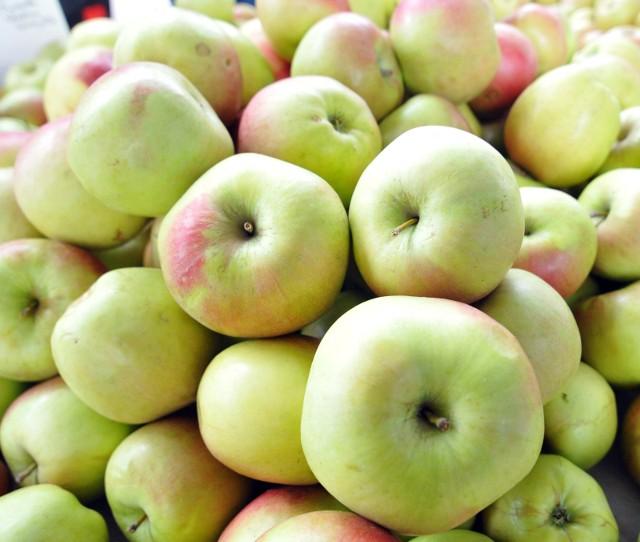 Sadownicy, którzy teraz wyciągają jabłka z chłodni, mogą za nie otrzymać co najwyżej złotówkę za kg