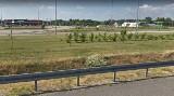 Plaga much na autostradzie A2 w województwie łódzkim. Nocne utrudnienia na MOP Parma i MOP Polesie na odcinku między Łodzią a Warszawą 31.07