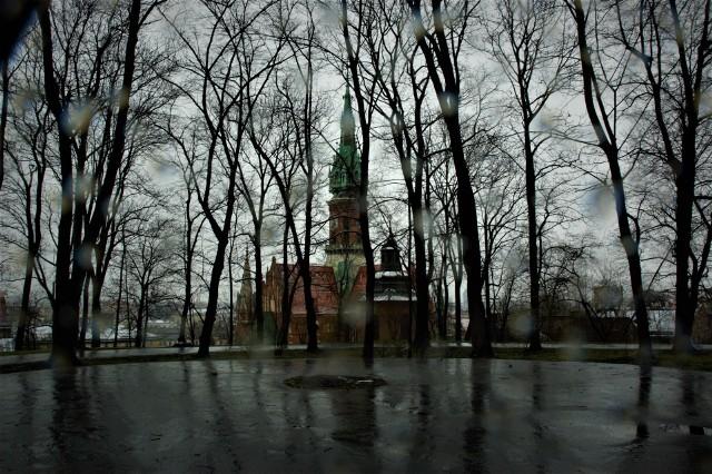 Park Bednarskiego czeka na rewitalizację