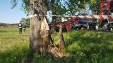 Wypadek śmiertelny w Rzgowie. Nie żyje młody mężczyzna. Wjechał samochodem w drzewo [ZDJĘCIA, FILM]