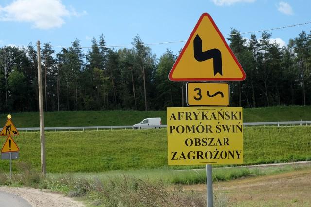 Afrykański pomór świń został stwierdzony w Polsce po raz pierwszy w historii w lutym 2014 r.