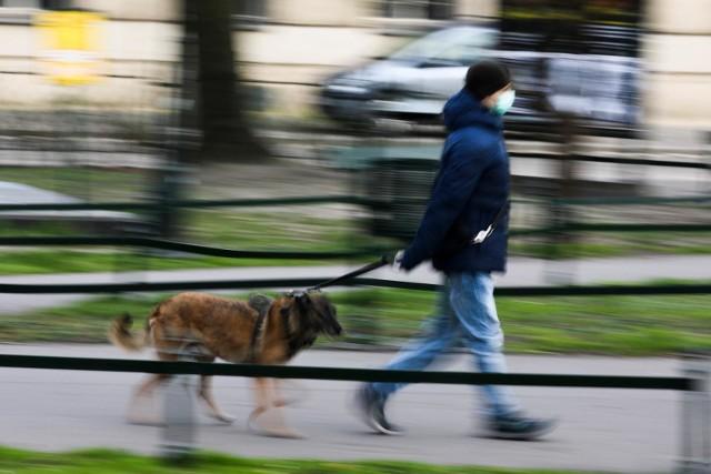 Polisa psa to nowoczesny produkt, który umożliwia objęcie ochroną ok. 250 ras psów oraz psy nierasowe.