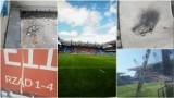 Wisła Kraków. Miasto nie dba o czystość na stadionie za 600 mln złotych [ZDJĘCIA]