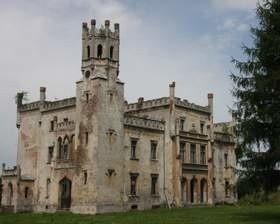 Pałac w Naroku wystawiono na sprzedaż. (fot. Andrzej Jagiełła)