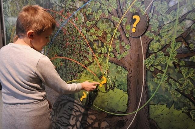 Dzieci mogą się uczyć o ekologii w Lasku Wolskim - teraz odpłatnie