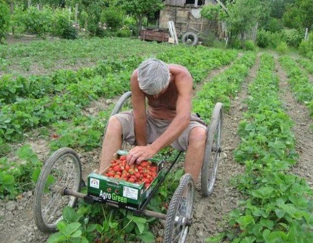 W naszym regionie rolników nie brakuje, wielu sobie doskonale radzi i karmi, jak by nie patrzeć, miastowych. Wiele gospodarstw prężnie się rozwija, ale dla wielu internautów wieś wciąż kojarzy się bardzo stereotypowo. Wiele memów o rolnikach z Podlasia jest po prostu głupich, ale należy przyznać, że nie brakuje autentycznie zabawnych.