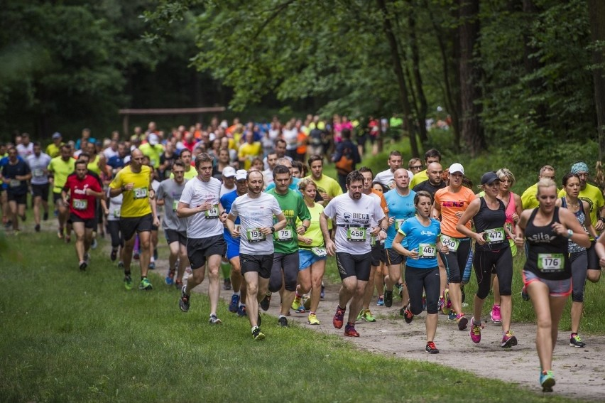 W ostatnim cyklu City Trail wystartowało ponad 10 tys. osób