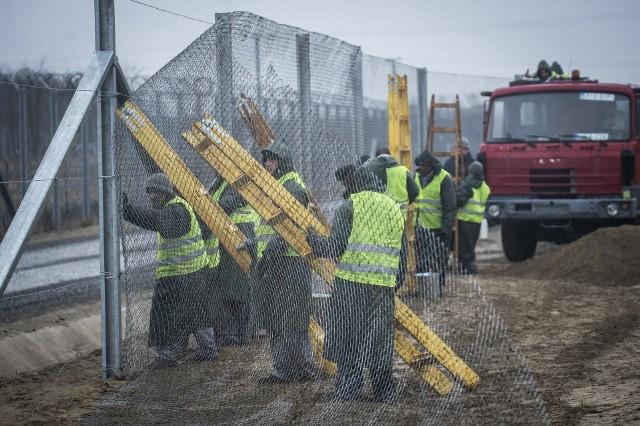 Budowa płotu na południowej granicy Węgier